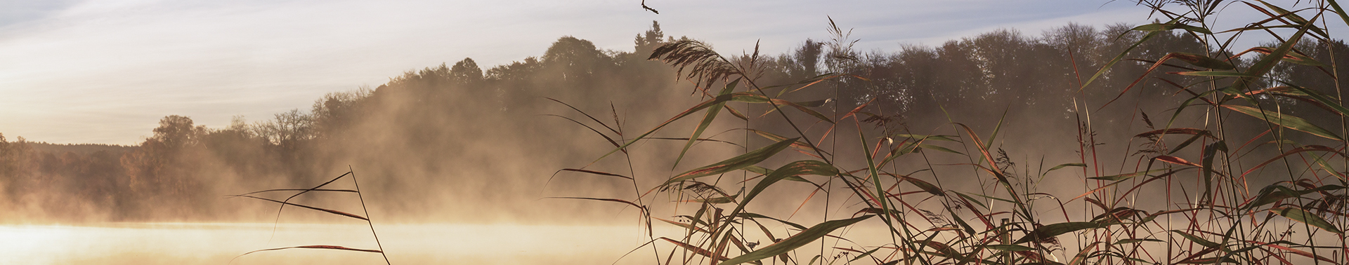 Wellspring Center of Counseling Services - Steam rising from lake at sunrise